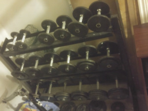 Dumbell with rack