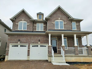 Brand New 4 Bedroom 4 Bath home for rent !