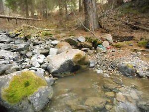 Placer claim on the Whipsaw Creek by Princeton