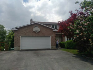 Great Family Home, w/In law Suite