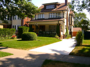 HIGH PARK , BLOOR and THE JUNCTION  FURNISHED ROOM FOR RENT