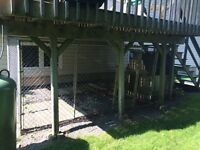 Dog house and kennel free of charge