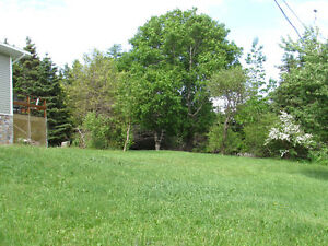 2.5 ACRE BOREAL FOREST ESTATE, PRIVACY GALORE...AVONDALE. St. John's Newfoundland image 5