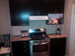 kitchen cupboards, sink, counter top