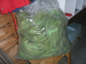 LARGE CLEAR BAG OF GREEN RIBBON