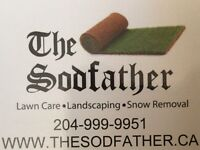 CITY WIDE AFFORDABLE SNOW CLEARING,PLOW,PLOUGH,SHOVELLING