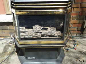 Gas Fire place free standing