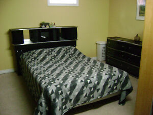 Private, Furnished Basement Bedroom for Rent