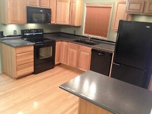 Red Deer House For Rent