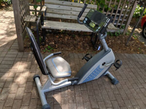 Weslo Pro 10.8X Recumbent Indoor Exercise Bike