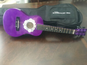 Guitare First Act discovery a vendre