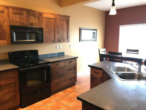 FURNISHED SUITE with cable/internet/utilities - Sun Rivers