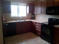 Town House Rental Available Nov. 1st in Cayuga