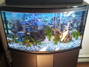 Aquarium Panoramique 45 Gallons Tout Inclus !