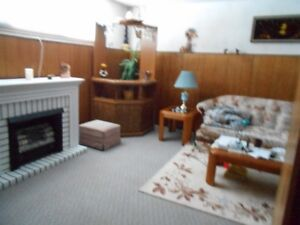 Very nice complete furnished suite in a lower level of bi level
