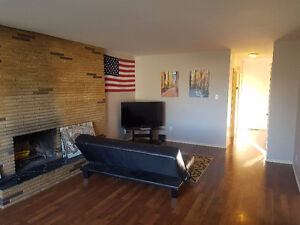 Roomate Wanted - Inexpensive, good location, lots of space