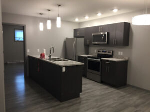 Two bedroom Crestview basement suite available Feb 1.