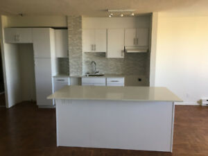 RENOVATED  3 1/2 CONDO STYLE APARTMENT FOR RENT