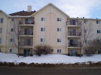 One Bedroom Apartments in millwood for rent