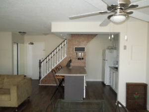 Beautiful Condo for rent in downtown Dundas