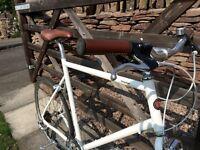 Tokyo bike CS 8 speed bicycle