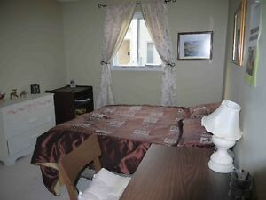 UWO:5 bedrm+3 full bath$420/Room all inclusive Wonderland/Sarnia