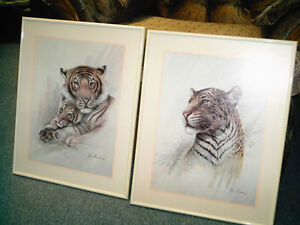 Lion's Pictures by Ruane Manning