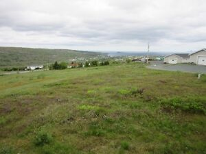 25-35 Walshs Rd - Upper Island Cove - MLS 1128615 St. John's Newfoundland image 5