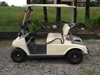 Kart golf