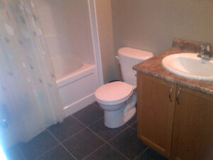 1 Room for rent from May 01, 2017 to August 31, 2017 Kitchener / Waterloo Kitchener Area image 7