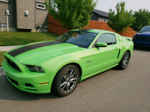 *REDUCED* 2014 MUSTANG GT *5200KM*