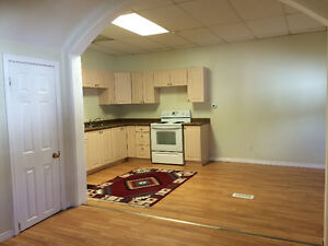 Large 2 bedroom apartment in South River