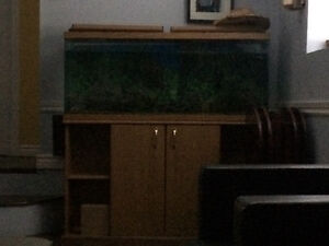 55 gallon long -need gone