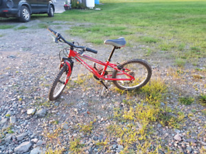Norco Youth Mountain Bike