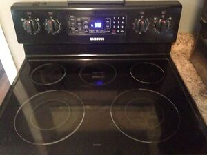 Samsung Fridge, stove, micro with range hood and dishwasher