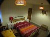 Room £330