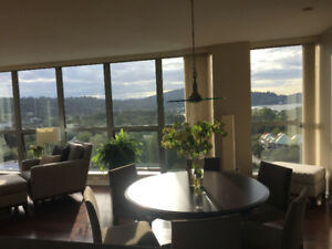 Beautiful 2Bed + Den Sub Penthouse For Rent