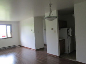 end condo in beautiful, happening Wolfville