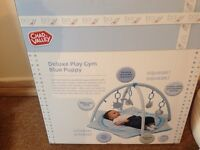 Deluxe play gym Blue Puppy