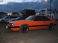 88 Ford Mustang 5.0