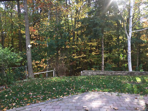 All Inclusive w/Laundry, Large Walkout with Amazing View -Barrie