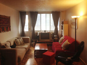 3 1/2 Montreal Downtown Apartment for Sublet: November to May