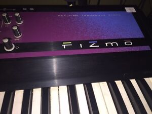 Trade Fizmo for analog synth