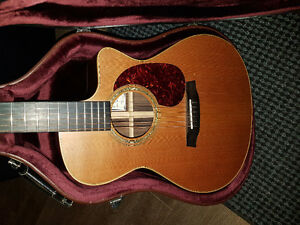 Walden acoustic electric retail price $600