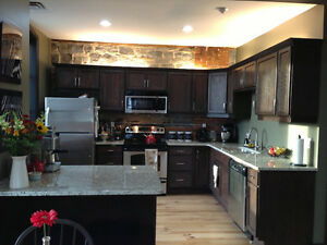 Room Avail in 3 BR High End Downtown Apartment - $850 incl Util