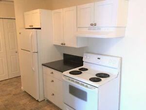 Comfortable Spacious 1 bedroom Available