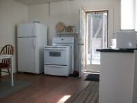 Car Optional Close To Everything! 1BD Apt Heat,Hydro,Water INCL