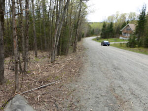 3.5 acres, $3,499 down, 10-yr open mtg, Haliburton, $315 monthly