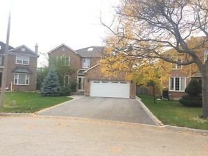 Bright Spacious 2BR Basement apartment in Richmond Hill