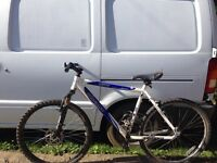 Salcano assos jump bike